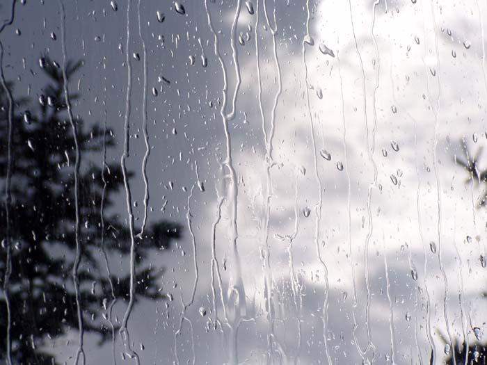 آه باران.. ای امید جان بیداران... بر پلیدی ها... چیره خواهی شد؟؟؟